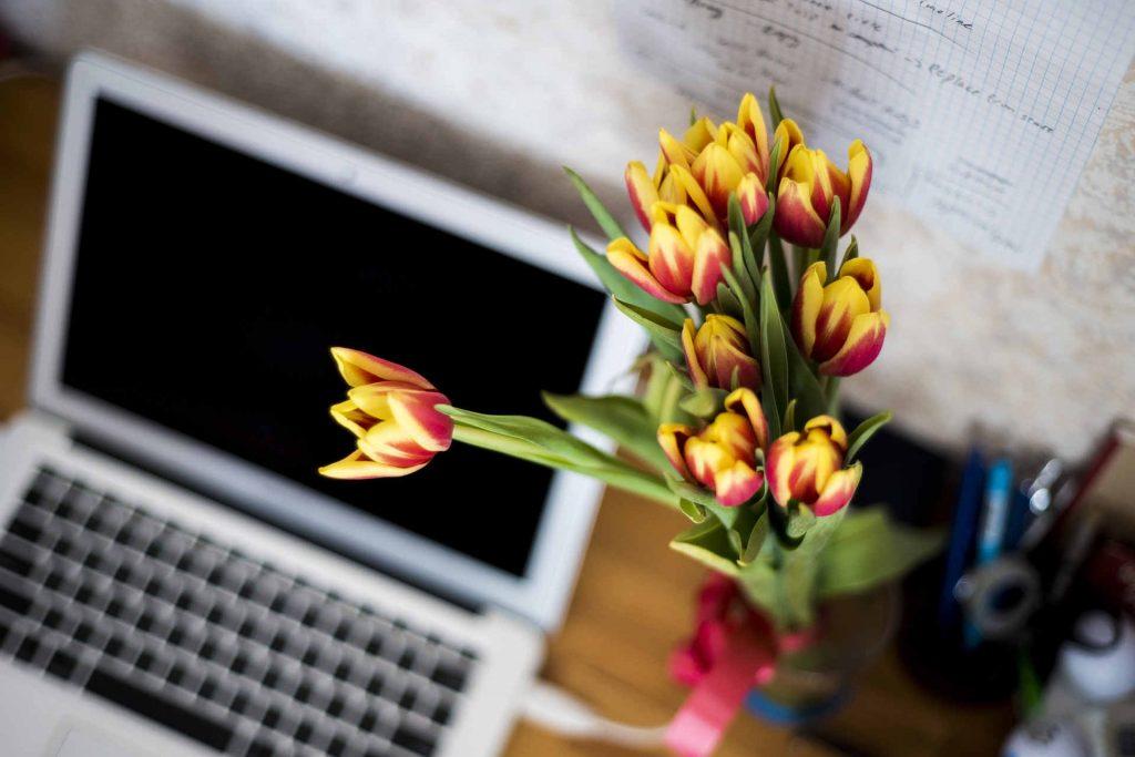 bouquet de tulipes devant ordinateur